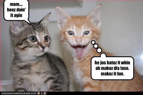 tab & spike #3 mom.... heez doin' it agin he jus hatez it whin ah makez dis fase. makez it fun.
