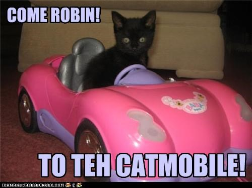 batman,batmobile,caption,captioned,car,cat,catmobile,driving,kitten,robin