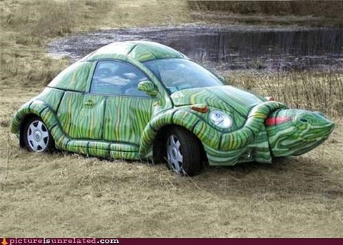 car,creepy,turtle,wtf