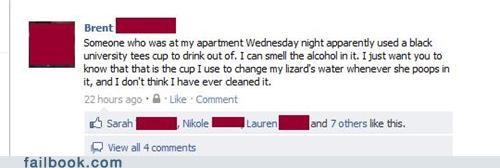 poop,drunk,lizard