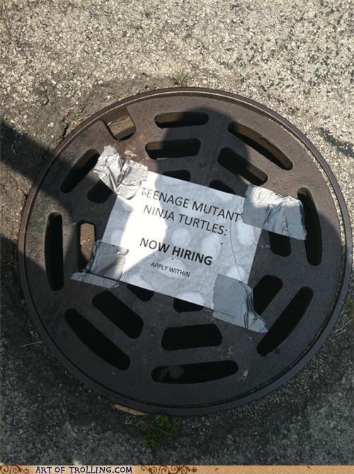 hiring IRL sewer TMNT - 4959325952
