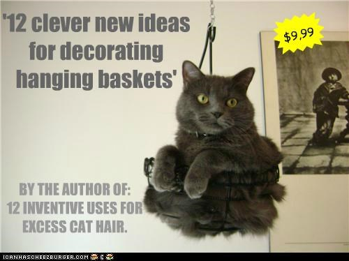 '12 clever new ideas for decorating hanging baskets' $9,99 * BY THE AUTHOR OF: 12 INVENTIVE USES FOR EXCESS CAT HAIR.