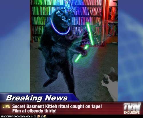 Breaking News - Secret Basment Kitteh ritual caught on tape! Film at elbendy thirty!