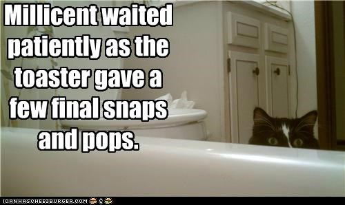 bathroom,bathtub,caption,captioned,cat,evil,final,patiently,pops,snaps,toaster,waited,waiting