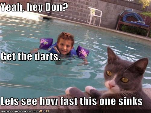 caption captioned cat darts fast game get how human pool see sinking sinks swimming toddler - 4960081408