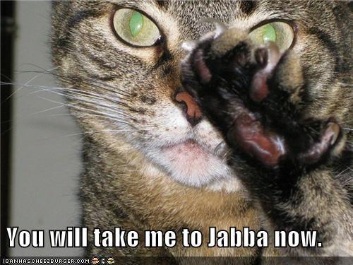 caption captioned cat force jabba jabba the hutt mind control star wars - 4960448000
