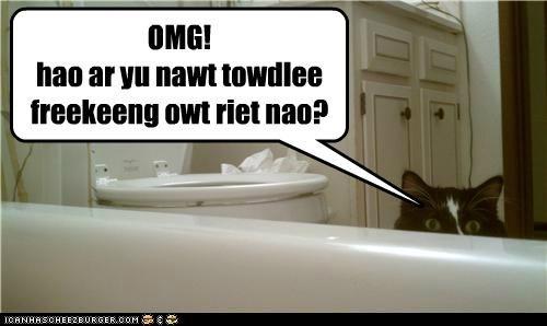 OMG! hao ar yu nawt towdlee freekeeng owt riet nao?