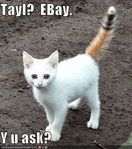 Tayl?  EBay.  Y u ask?