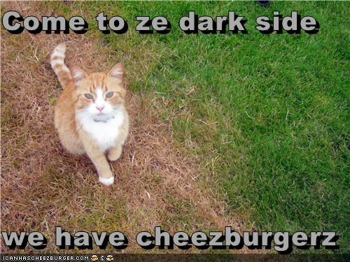 Cheezburger Image 4961999104