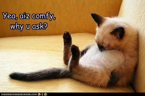 Yea, aiz comfy, why u ask?