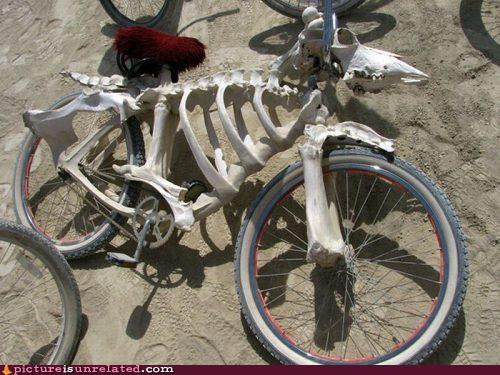 bicycle bones eww skeleton wtf