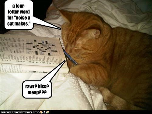 """a four-letter word for """"noise a cat makes."""" rawr? hiss? meep???"""