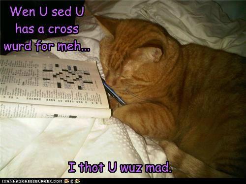 Wen U sed U has a cross wurd for meh... I thot U wuz mad.
