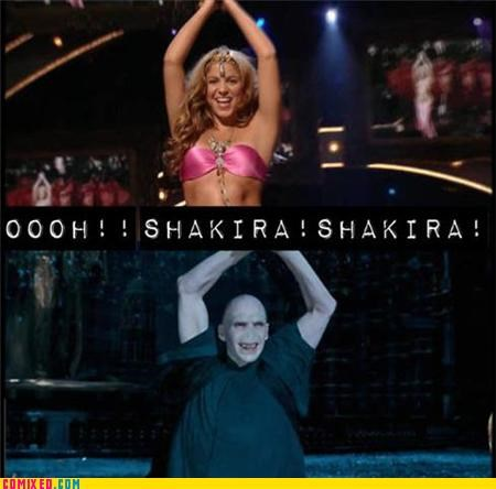 celebutard,Harry Potter,hips-dont-lie,shakira,voldemort