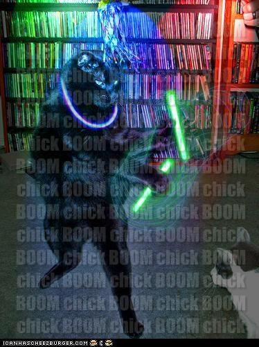 BOOM chick BOOM chick BOOM chick BOOM chick BOOM chick BOOM chick BOOM chick BOOM chick BOOM chick BOOM chick BOOM chick BOOM chick BOOM chick BOOM chick BOOM chick BOOM chick BOOM chick BOOM chick BOOM chick BOOM chick BOOM chick BOOM chick BOOM chick BOOM chick BOOM chick BOOM chick BOOM chick BOOM chick BOOM chick BOOM chick BOOM chick BOOM chick BOOM chick BOOM chick BOOM chick