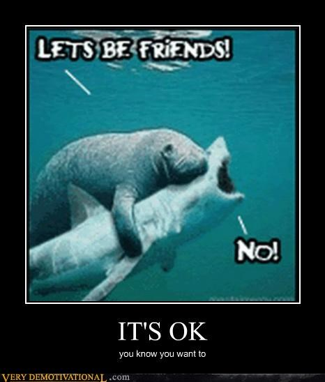 animals,friends,hilarious,manatee,shark