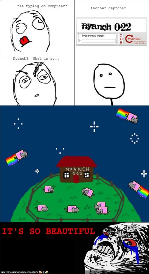 beautiful captcha memecats Memes Nyan Cat nyanch Rage Comics - 4963843072
