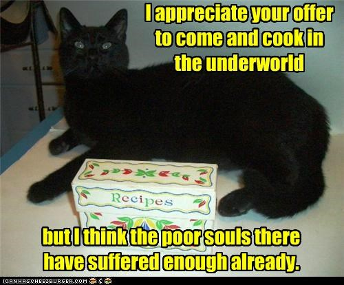 appreciate,basement cat,caption,captioned,cat,cook,mean,offer,recipe,recipes,sarcasm,souls,suffered,suffering,underworld