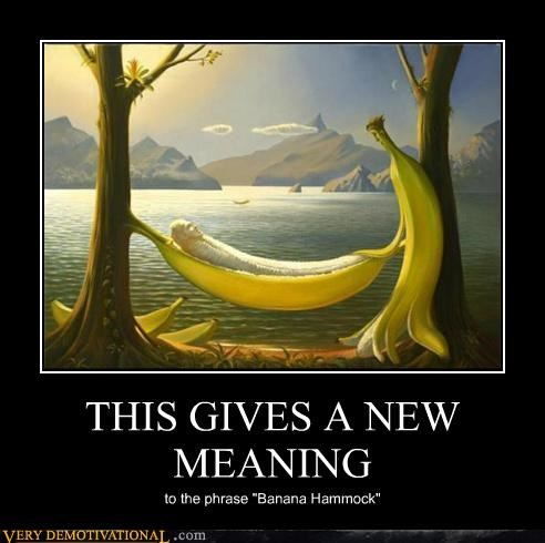 art banana hammock hilarious meaning wtf - 4964227584