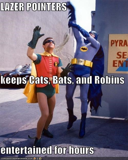 actor Adam West batman celeb funny - 4964339712