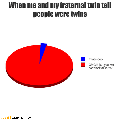 fraternal look alike Pie Chart twins