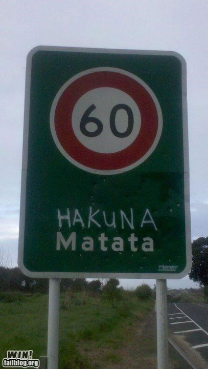hacked irl,hakuna matata,quote,road sign,sign,the lion king
