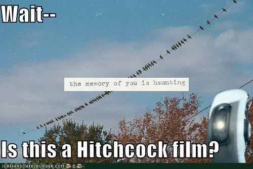 birds haunting hipsterlulz hitchcock scary - 4964819968