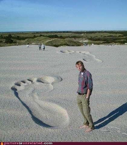 beach,bigfoot,wtf