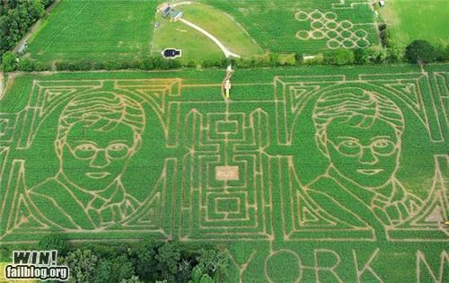 books,corn,crop circle,design,fields,Harry Potter,maze,movies
