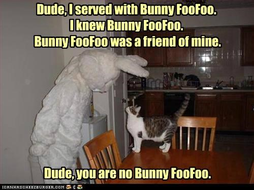 bunny bunny foofoo caption captioned cat comparison costume human quote reminiscing - 4965937408