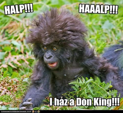 caption captioned Don King gorilla haircut halp help i has - 4966700288