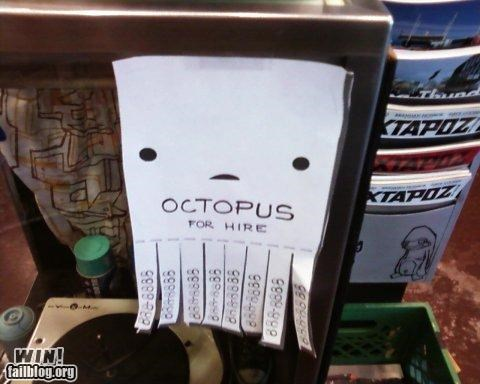 clever octopus signs - 4967068160
