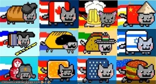 around the interwebs memecats Memes Nyan Cat - 4967072000