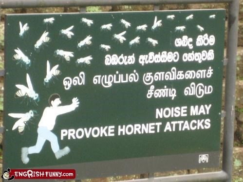 sign,those terrible winged insects,warning