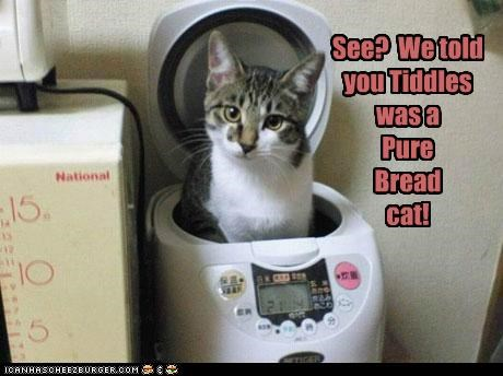 See? We told you Tiddles was a Pure Bread cat!