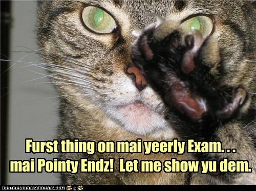 Furst thing on mai yeerly Exam. . . mai Pointy Endz! Let me show yu dem.