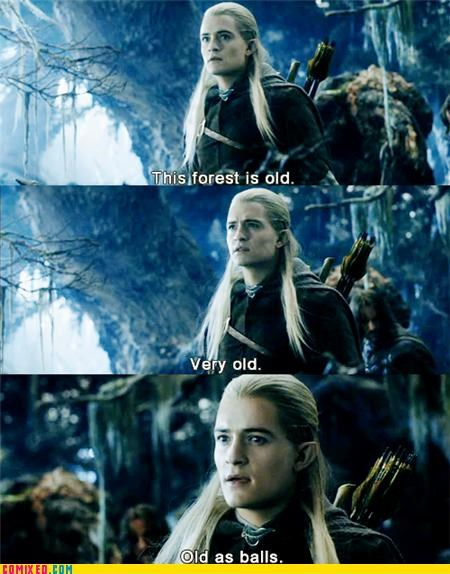 Forest,From the Movies,legolas,Lord of the Rings,old