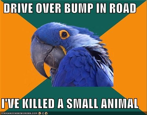 animal,animemes,baby,bump,driving,killed,Paranoid Parrot,small