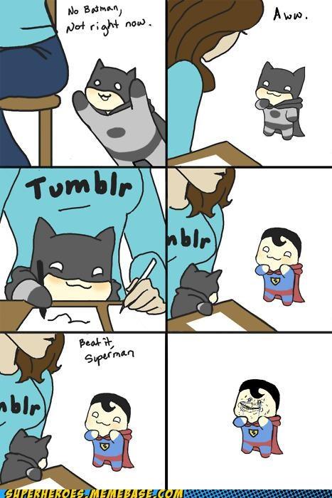batman Cats comics cute Random Heroics superman - 4970084096
