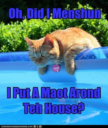 Oh, Did I Menshun I Put A Maot Arond Teh House?