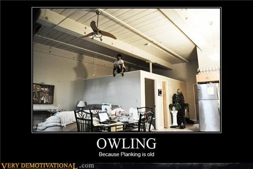 hilarious owling Planking wtf - 4971118336