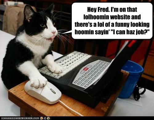 "Hey Fred. I'm on that lolhoomin website and there's a lol of a funny looking hoomin sayin' ""I can haz job?"""