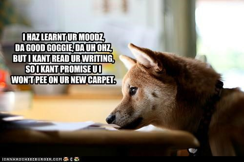 I HAZ LEARNT UR MOODZ, DA GOOD GOGGIE, DA UH OHZ, BUT I KANT READ UR WRITING, SO I KANT PROMISE U I WON'T PEE ON UR NEW CARPET.