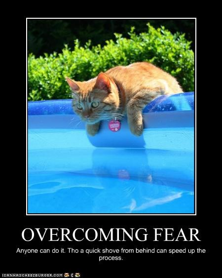 OVERCOMING FEAR Anyone can do it. Tho a quick shove from behind can speed up the process.