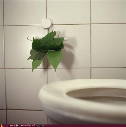leaves mint nature toilet wtf - 4972665344