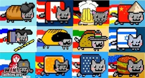 Memes Nyan Cat thanks the internets worldly - 4973046784