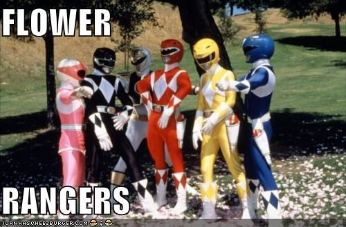 funny power rangers TV - 4973144832