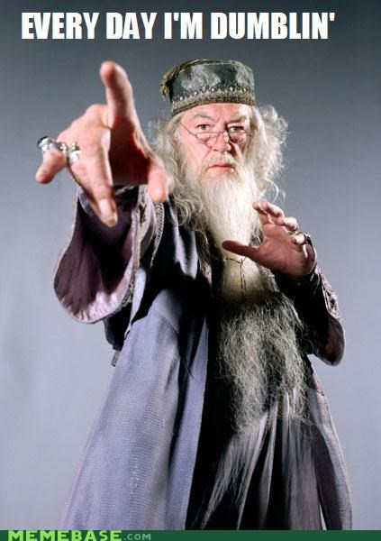 dumbledore every day Harry Potter Memes shufflin - 4973555968