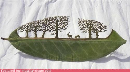 art cut cut out leaf precise scene tiny - 4973797120