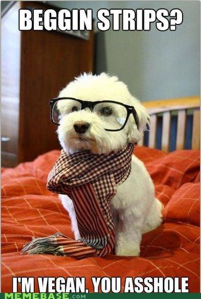 animemes dogs food free hipster-disney-friends vegan - 4973927424
